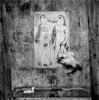 ROGER BALLEN X DIE ANTWOORD (6)